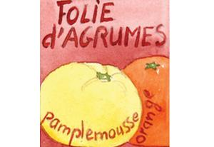 Infusion fruits Folie d'agrumes